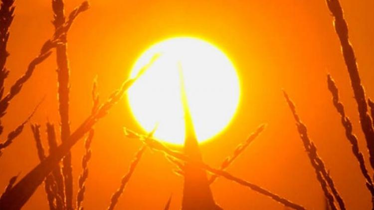 Do Česka míří léto? Příští týdny budou tepl