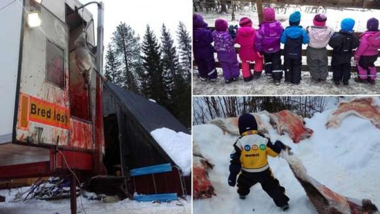 Lidé se bouří. Norská školka vzala děti na výlet na sobí jatka