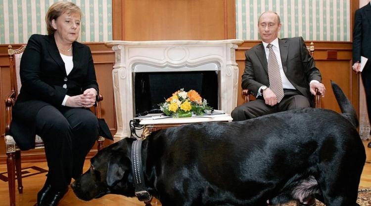 Oblíbená fenka ruského prezidenta vylekala Merkelovou. Nebyl to záměr, uvedl Putin