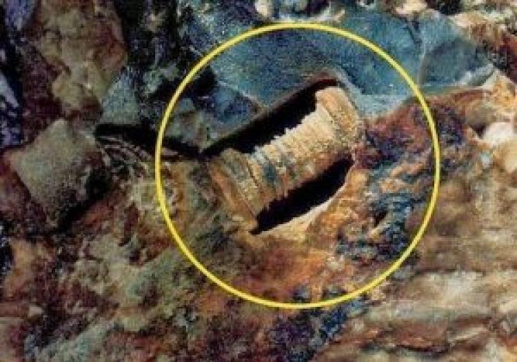 Ruské vědecké kapacity si neví rady: Archeologové našli 300 milionů let starý šroub