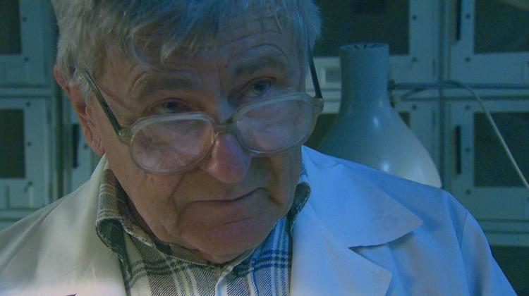 Tajnosti o geneticky upravených potravinách. Vědec odhalil šokující pravdu a přišel o práci...