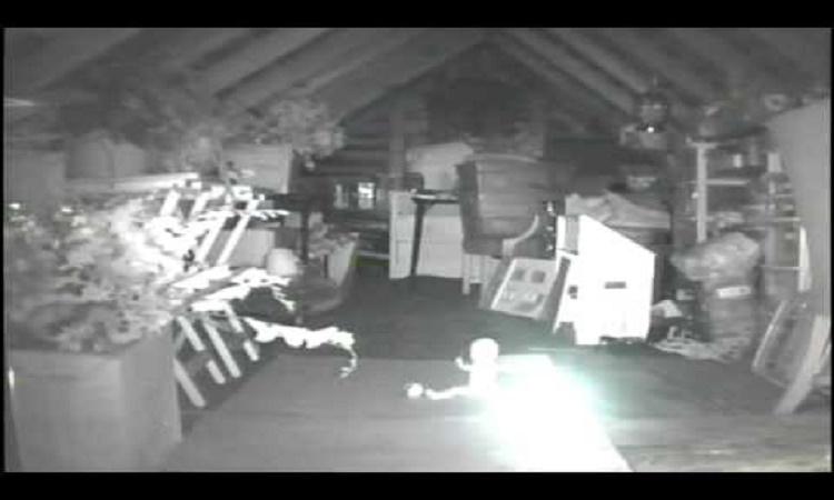Manželé slyšeli často hluk v podkroví, nainstalovali tam kameru a uviděli něco šíleného