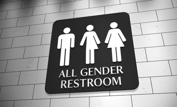 Už to přichází. Němečtí Zelení chtějí společné záchody pro obě pohlaví, současné rozdělení je diskriminační