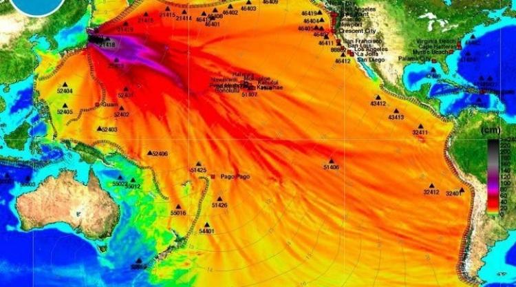 Kvůli Fukušimě jsou ozáření všichni lidé na světě