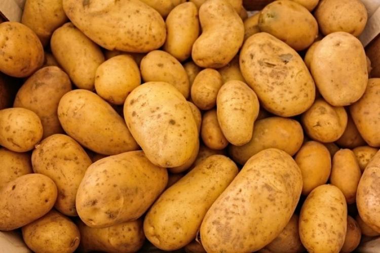 Celá rodina zemřela po fatální chybě s bramborami. A to se jich ani nedotkli...