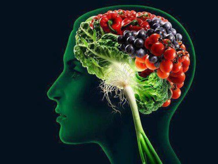 Tajemství téměř dvojnásobného zlepšení paměti a zvýšení výkonu mozku. A vše přírodní cestou...