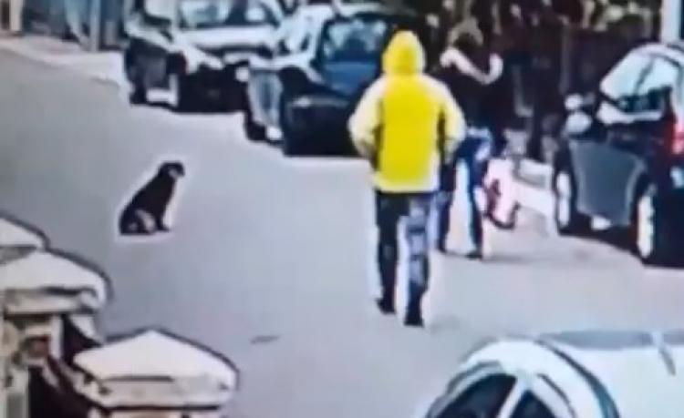Neznámý muž napadl ženu. Nečekal, že mu v tom zabrání pes