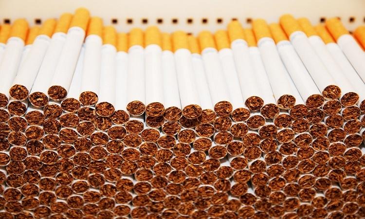 Něco pro kuřáky. Po tomto rozboru zřejmě přehodnotíte své zvyky, cigarety obsahují papír...