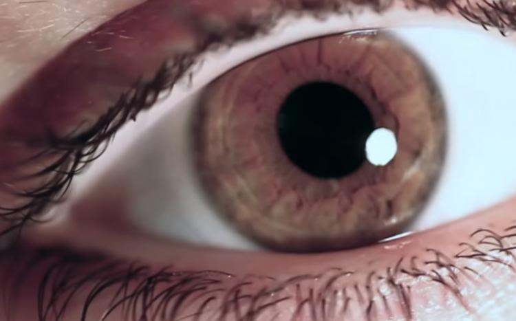 Zakázané video válcuje internet. Proč jej nesmíme vidět?