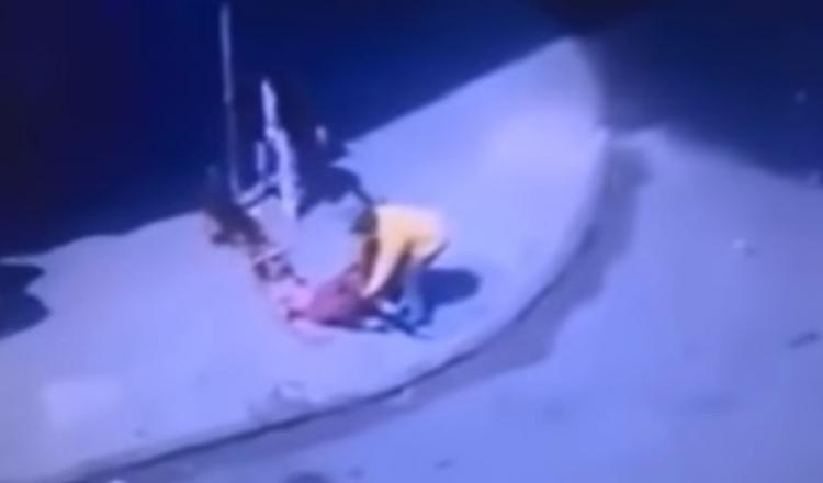 Imigranti napadli dva vlčáky. No a takhle to dopadlo...