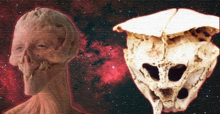 Tajemná lebka nalezená v Bulharsku může patřit mimozemskému tvorovi, říkají vědci
